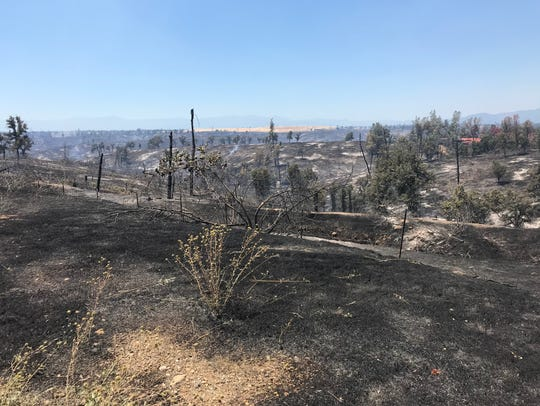 Sunday's Creek Fire burned through some of the same