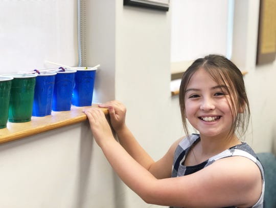 Ten-year-old Rachel Peterson sets her experiment on