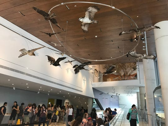 """The Great Bird Migration"" at the museum entrance."