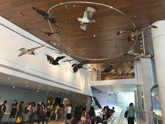"""""""The Great Bird Migration"""" at the museum entrance."""