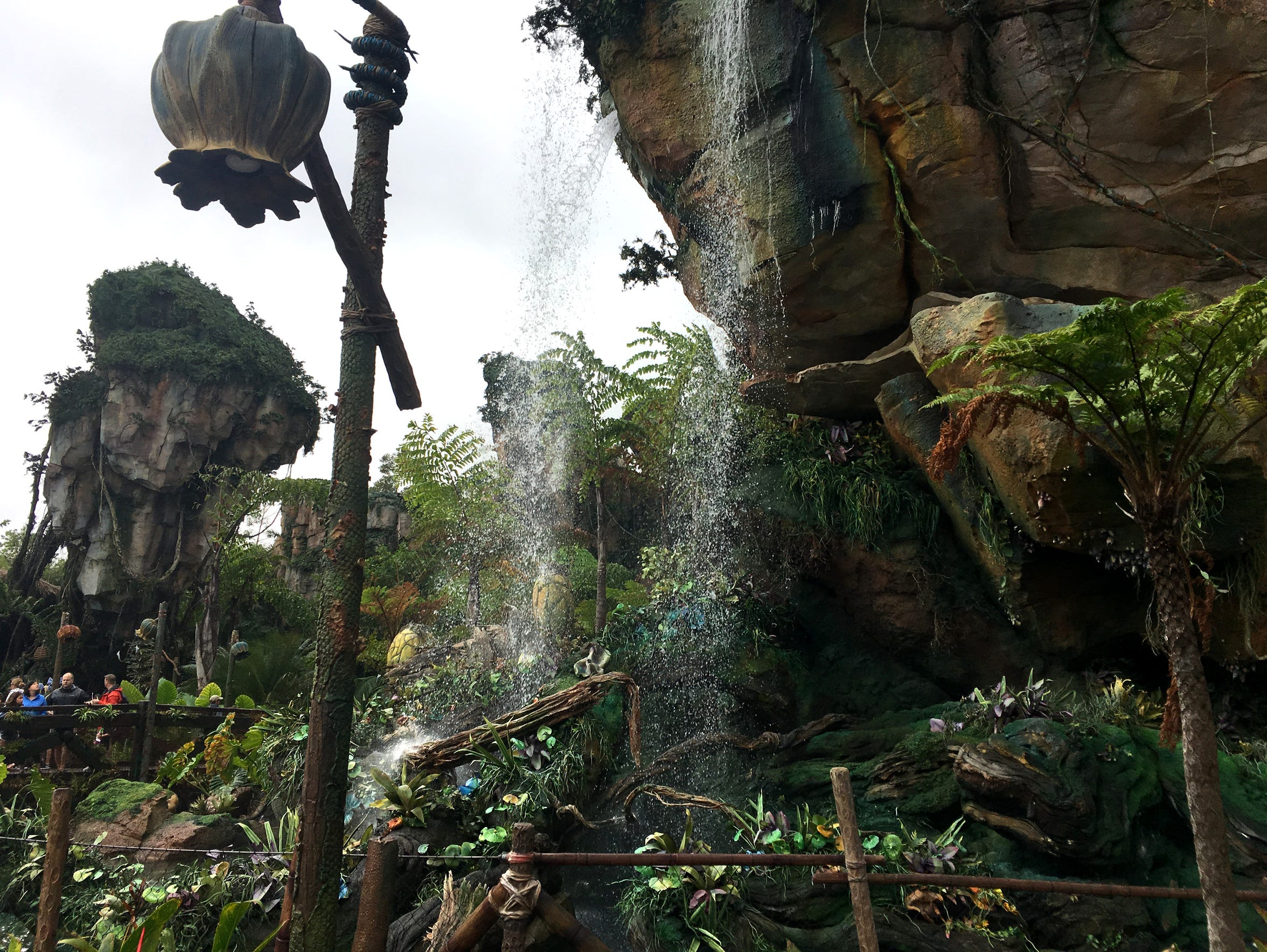 The wait to get into Animal Kingdom's Flight of Passage