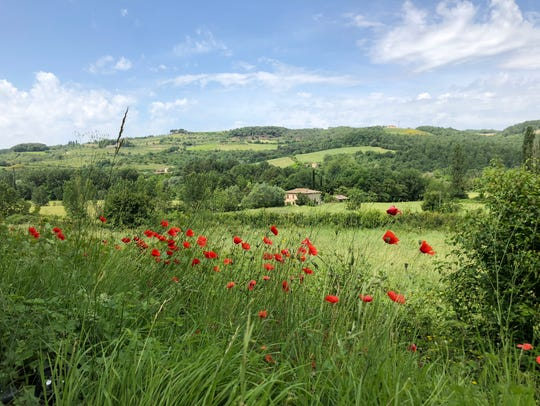 This is Gaiole in Chianti, Italy, along our route of