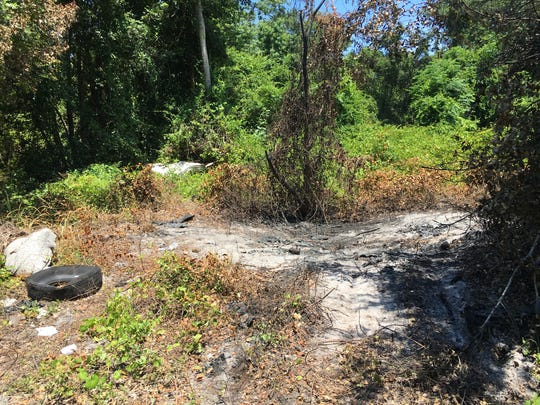 A charred patch of woods where a homicide victim was left in a burning car of Wiley Avenue in Mims.