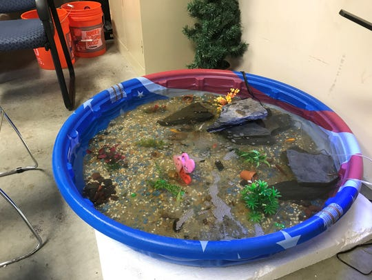 The makeshift fish pond at the Center for Family Support