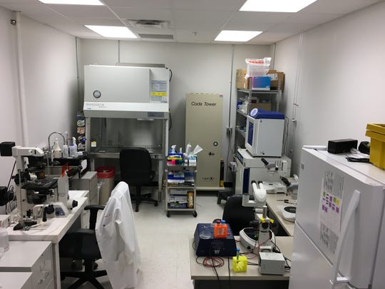 Part of the SAB Biotherapeutics labs inside the Sanford Research facility in Sioux Falls.