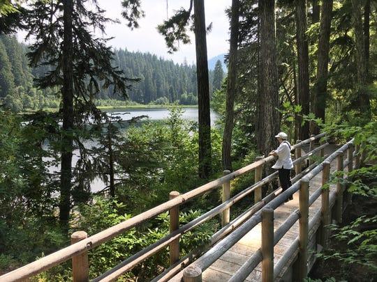 Daly Lake footbridge over spring inlet creek.