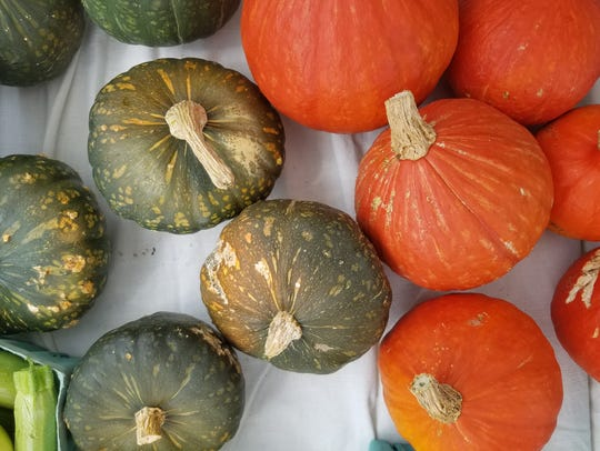 New Roots Market Garden has Kuri squash and Kabota