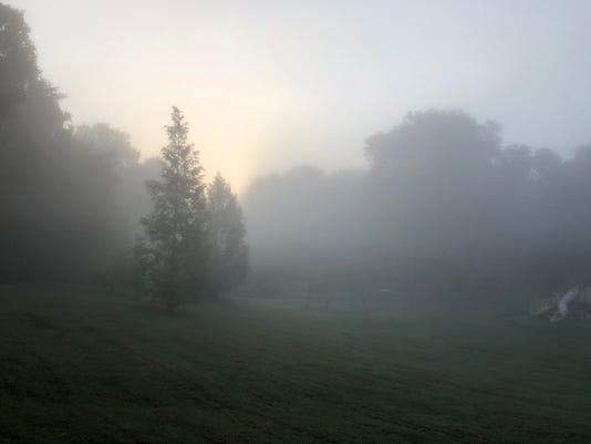 636691592739007074-Fog-2.jpg