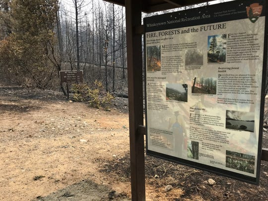 A kiosk off Paige Bar Road at Whiskeytown National Recreation area provides information about the role of fire in forests. The kiosk survived the Carr Fire, but much of the surrounding forest did not.