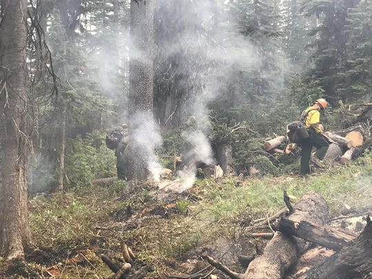 Helena hot shots remove fuels to improve the fire line