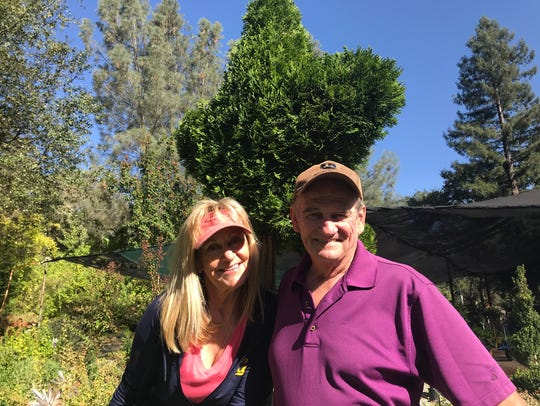 Gold Leaf Nursery owners Sue and Doug Campbell have