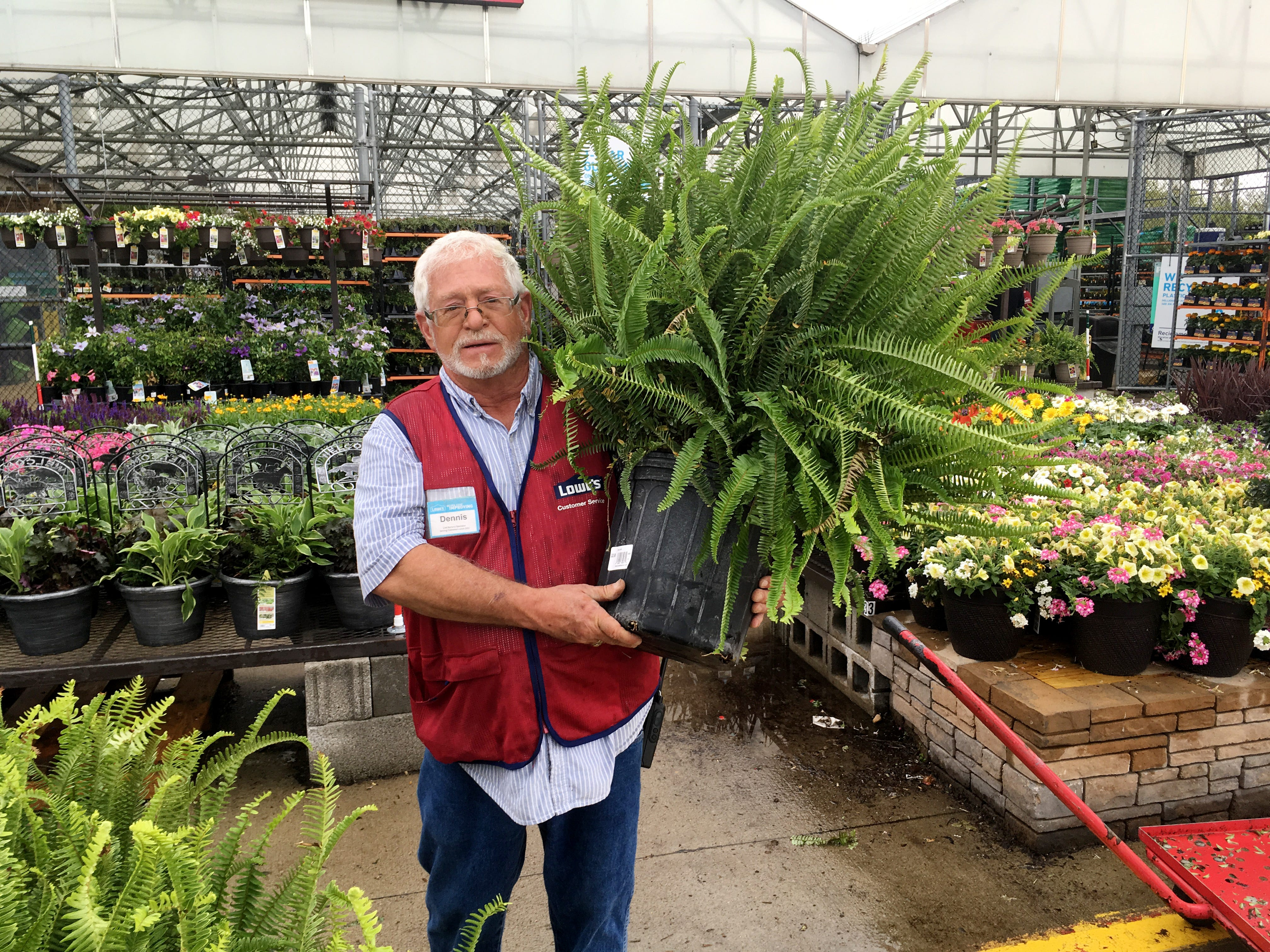 Plants For Your Porch And Patio That You (almost) Canu0027t Kill,