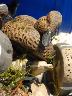 Early teal hunts can be a hit-or-miss affair in North Texas. To increase your odds of shooting success, get small details right like assembling the proper decoy spread for the diminutive waterfowl species.