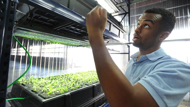 Green Collar Foods operations director Darren Riley explains the process of misting plants at Eastern Market.