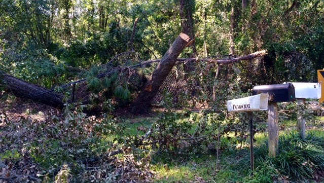 The Swearingens can't even check their mail without being reminded of Hermine's destruction.