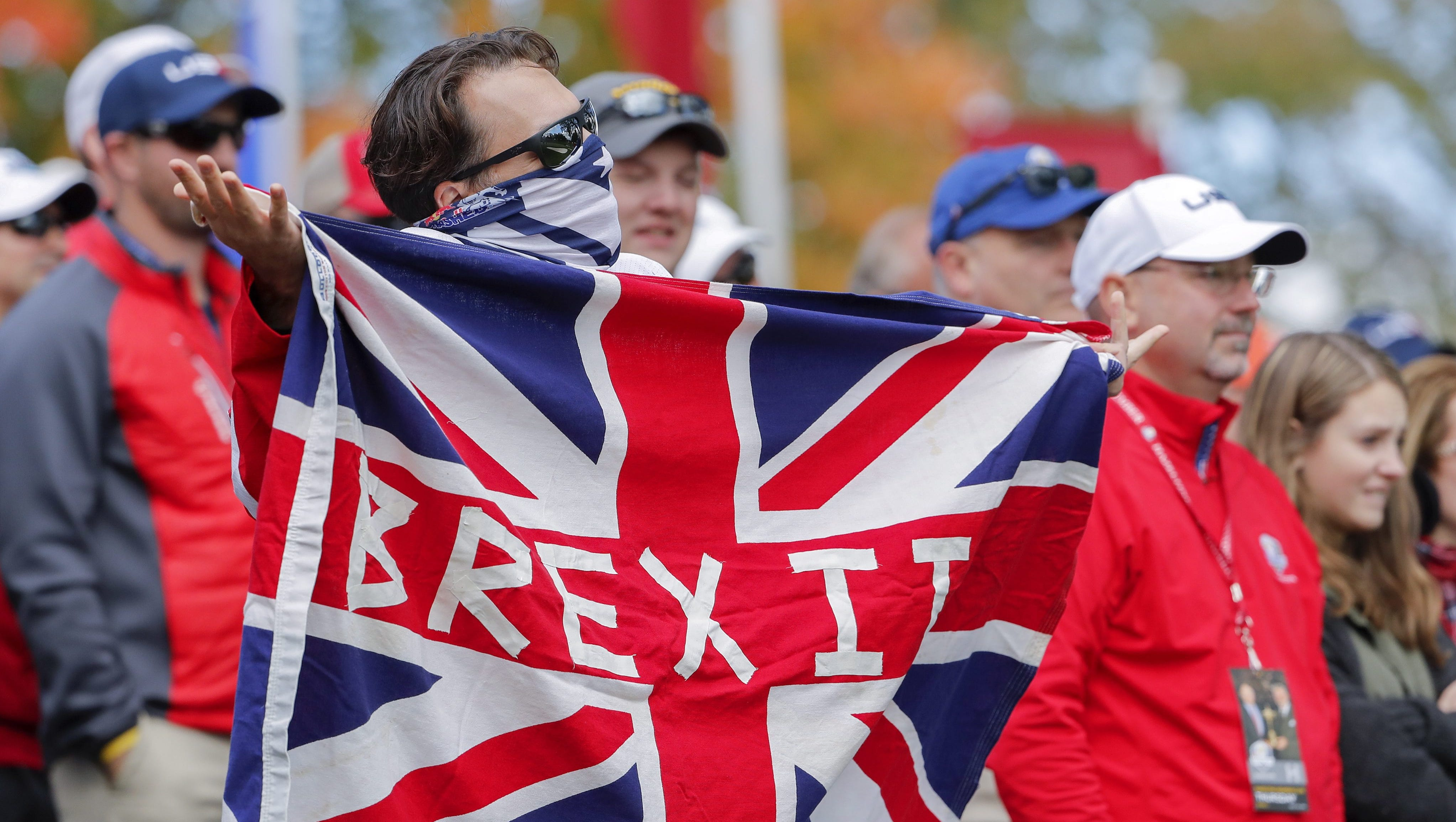 Image result for brexit justin fitzpatrick