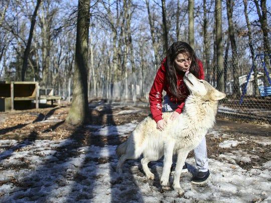 Brenda Pearson pets her wolf dog Natahka at Howling Timbers on Jan. 24.