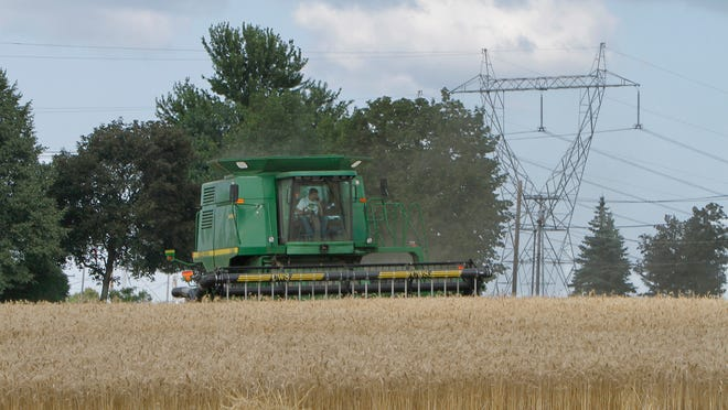 With RG&E power lines looming behind him, David Krenzer harvests acres of wheat as he works the fields at the Krenzer family farm in Chili. Marie and David Krenzer objected to the appropriation of their property by RG&E and formally intervened with the PSC.