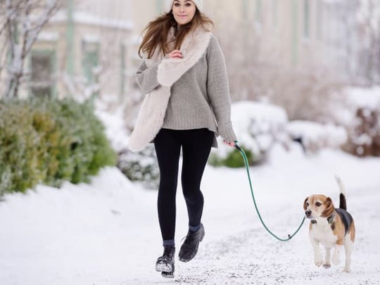 When the weather first starts getting cold, your dog may want to keep their walks brief.
