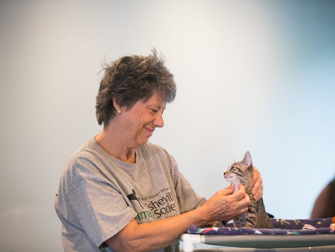 Humane Society volunteer Sharon Wood plays with a kitten