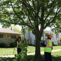First neighborhood program starts getting attention