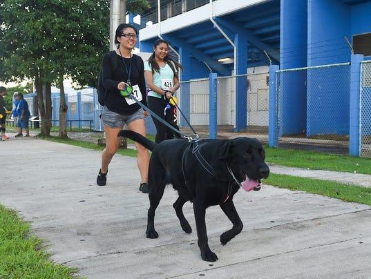 636332383583341099-2K-Pet-Run-Walk-09.jpg
