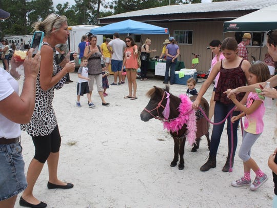 More than 1,200 people turned out for a previous Equine Rescue & Adoption Foundation Country Festival.