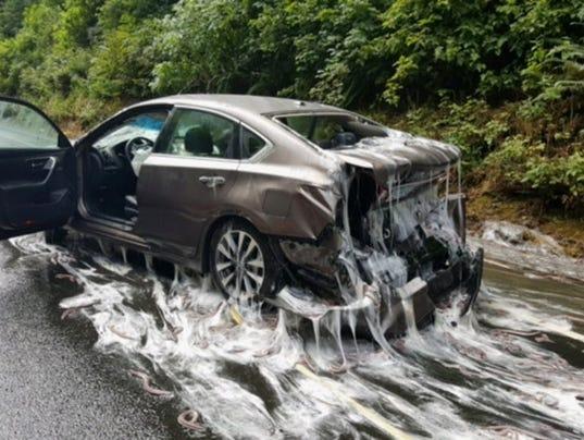 AP EELS SLIME CARS A USA OR