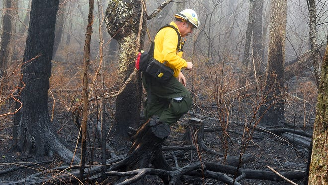Norm Rooker, a public information officer for the incident, steps over charred branches as he walks through a burned section of forest, talking about the overall natural effects of the Rocky Mountain fire in the Shenandoah National Park during an interview just off the Skyline Drive, south of Elkton, on Thursday, April 28, 2016.