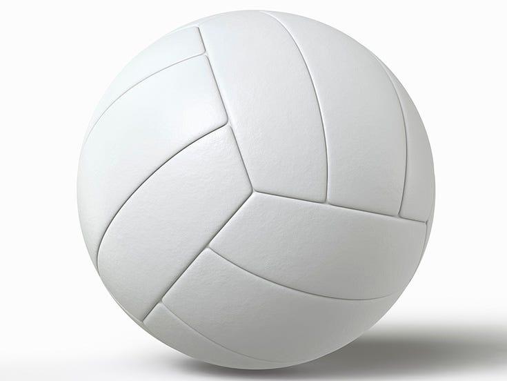 lh logo: volleyball