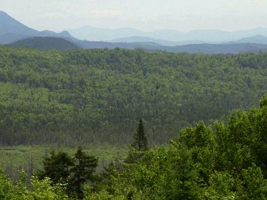 Ferdinand Bog in Ferdinand is part of the Kingdom Heritage Lands in Vermont's Northeast Kingdom.