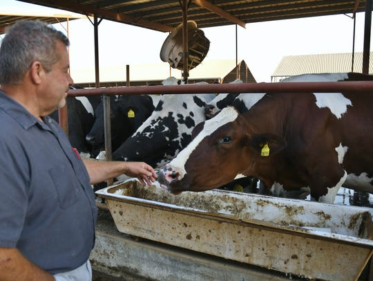 Airosa Dairy in Pixley milks roughly 2,900 cows. Owner