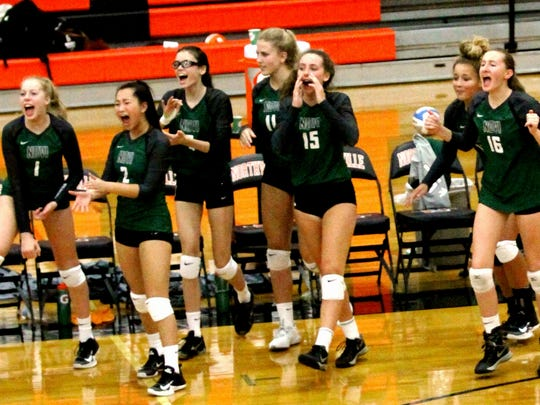 Novi players celebrate after a three-set triumph over Northville.