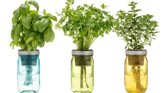 The Italian Herb Jar Kit brings the taste of Tuscany to any kitchen.