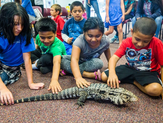 Children interact with a Tegu lizard from Kowiachobee
