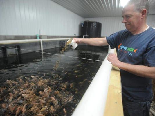 zan 0406 uncommon trades fish 001.JPG