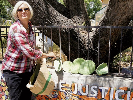 "Filmmaker Mary Darling displays cuttings of ""Johnny's Cactus,"" the plant which is the title subject of the short film she is producing, on Wednesday in Silver City. The film will feature animation by local artist Kate Brown. Randal Seyler - Sun-News"
