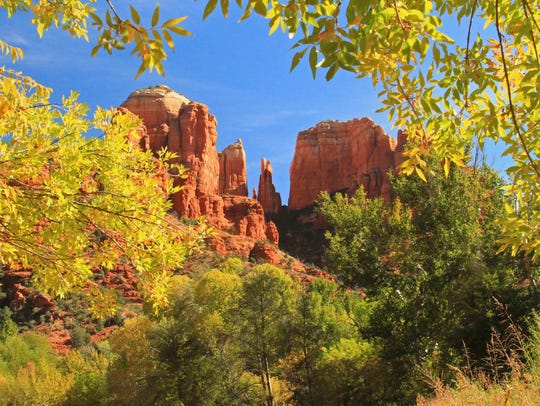 Cathedral Rock wrapped in the golden colors of fall