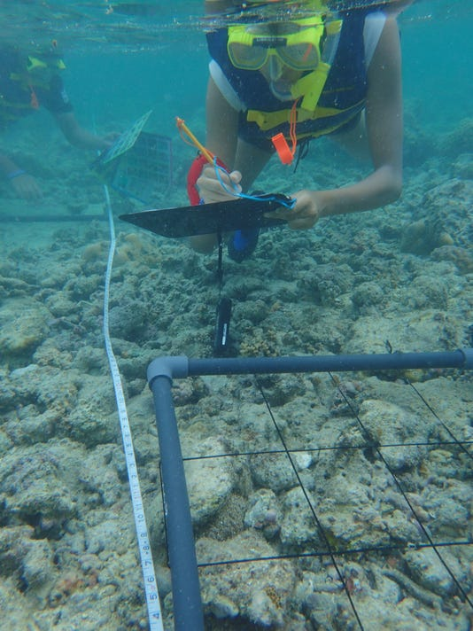 635762343719946793-Coral-reef-monitoring