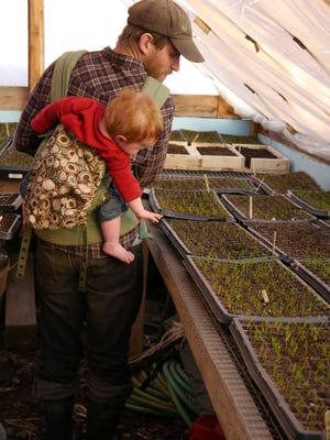 Edge Fuentes and his son, Waylon Spring, check onion transplants in spring 2014 in the seed house at the family's farm, Good Heart Farmstead, in Worcester.