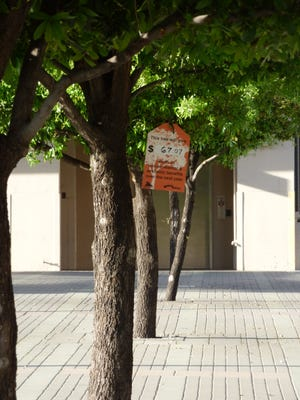 The Regional Tree & Shade Summit 2.0 at Arizona State University's Downtown Phoenix Campus gave information on the benefits of properly planting trees.