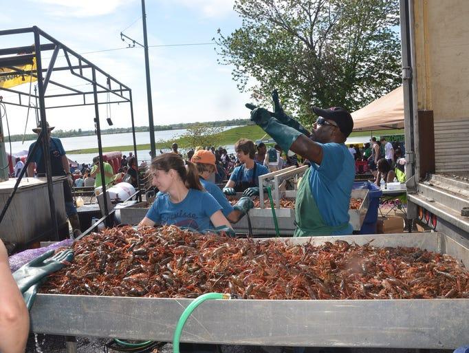 The Rajun Cajun Crawfish Festival is held in Memphis