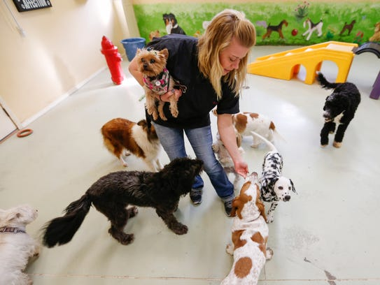 Breanna Hughes, manager of Pampered Paws Pet Resort,