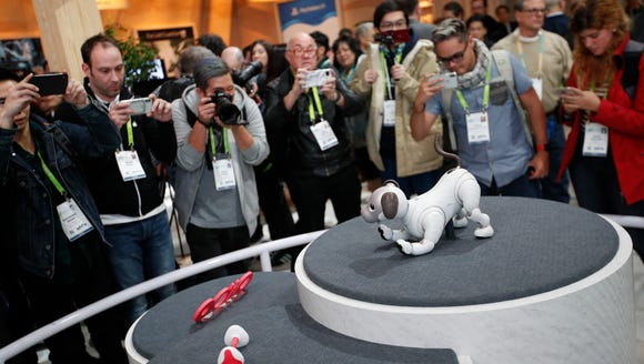 This is Sony's Aibo robot dog.