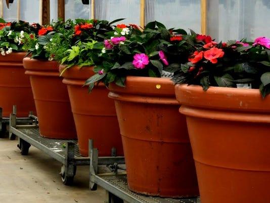 636287231014928212-Container-Gardening-Photo-1.jpg