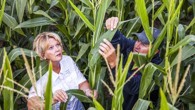 DuPont workers in the company's crop protection unit.