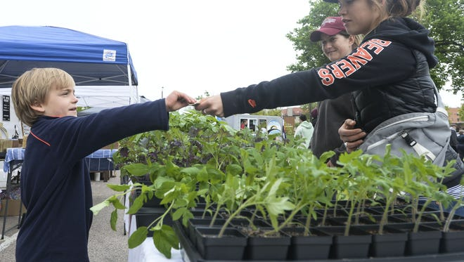 Coloradoan library Brittany Shenk hands 7-year-old gardener Levi Lloyd money in exchange for a tomato plant during the Larimer County Farmers Market. Brittany Shenk hands seven-year-old gardener Levi Lloyd money in exchange for a tomato plant during the Larimer County Farmers' Market Saturday, May 23, 2015, in Old Town Fort Collins, CO.