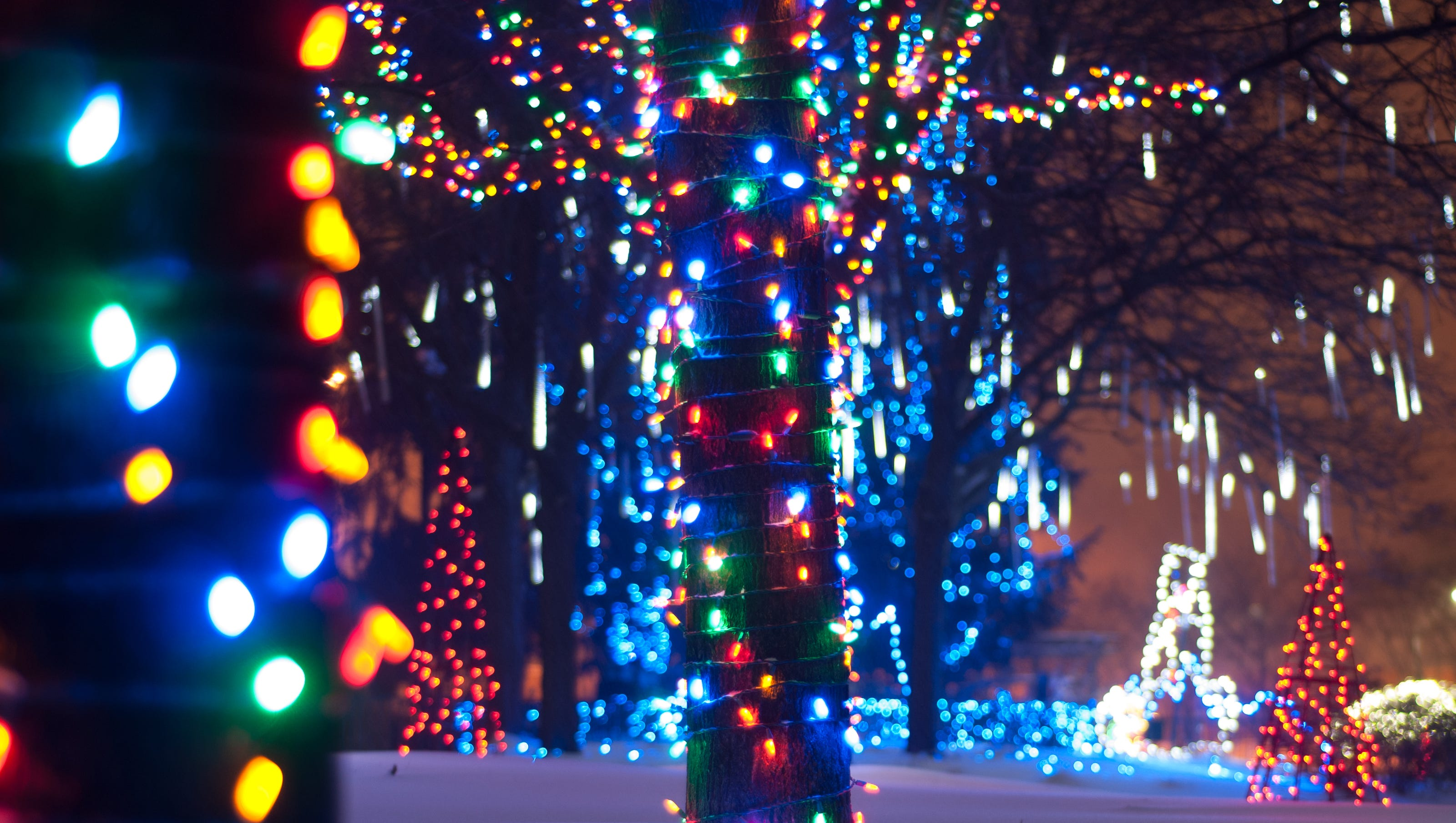 Christmas Festivities For All Ages Swarm Metro Detroit