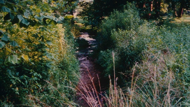 Portions of Beck Creek in Lebanon County are fenced and have a riparian buffer of plants, protecting the creek from pollution and runoff.