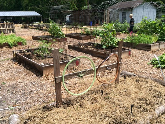 Community gardens can come in all shapes and sizes.